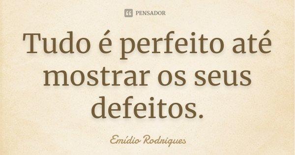 Tudo é perfeito até mostrar os seus defeitos.... Frase de Emídio Rodrigues.