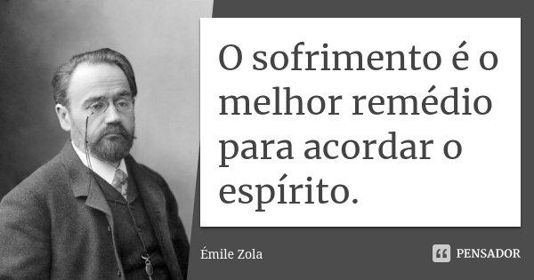 O sofrimento é o melhor remédio para acordar o espírito.... Frase de Émile Zola.