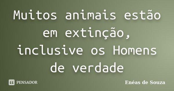 Muitos animais estão em extinção, inclusive os Homens de verdade... Frase de Enéas de Souza.