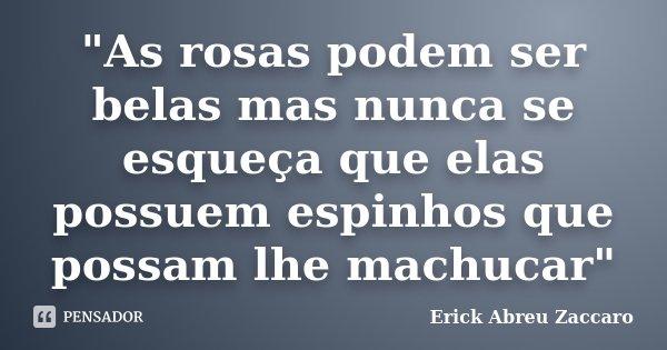 """""""As rosas podem ser belas mas nunca se esqueça que elas possuem espinhos que possam lhe machucar""""... Frase de Erick Abreu Zaccaro."""