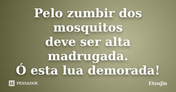 Pelo zumbir dos mosquitos deve ser alta madrugada. Ó esta lua demorada!... Frase de Etsujin.