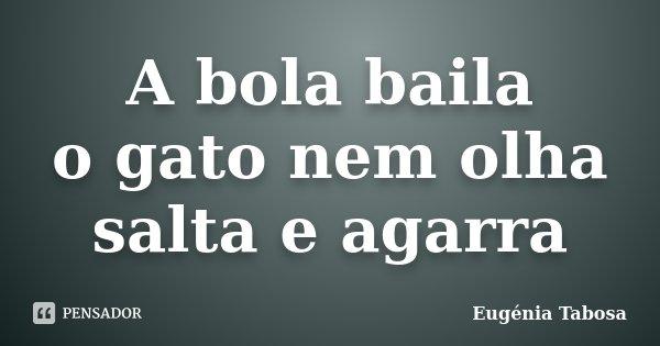 A bola baila o gato nem olha salta e agarra... Frase de Eugénia Tabosa.