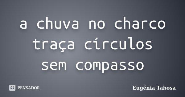 a chuva no charco traça círculos sem compasso... Frase de Eugénia Tabosa.