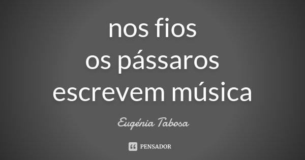 nos fios os pássaros escrevem música... Frase de Eugénia Tabosa.