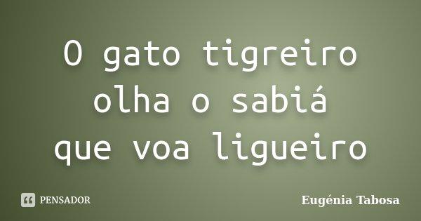 O gato tigreiro olha o sabiá que voa ligueiro... Frase de Eugénia Tabosa.