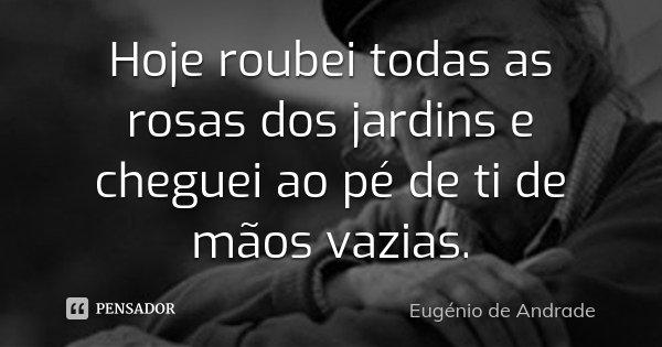 Hoje roubei todas as rosas dos jardins e cheguei ao pé de ti de mãos vazias.... Frase de Eugenio de Andrade.