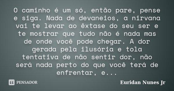 O caminho é um só, então pare, pense e siga. Nada de devaneios, a nirvana vai te levar ao êxtase do seu ser e te mostrar que tudo não é nada mas de onde você po... Frase de Euridan Nunes Jr.
