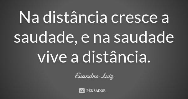 Na distancia cresce a saudade, e na saudade vive a distancia.... Frase de Evandro Luiz.