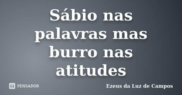 Sábio nas palavras mas burro nas atitudes... Frase de Ezeus da Luz de Campos.
