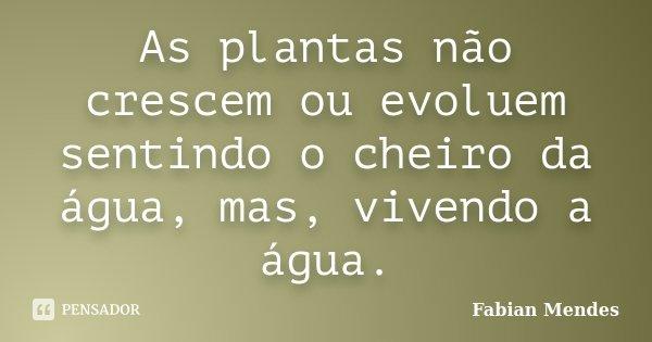 As plantas não crescem ou evoluem sentindo o cheiro da água, mas, vivendo a água.... Frase de Fabian Mendes.