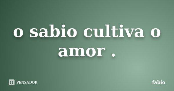 o sabio cultiva o amor .... Frase de fabio.
