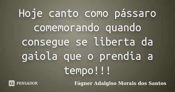Hoje canto como pássaro comemorando quando consegue se liberta da gaiola que o prendia a tempo!!!... Frase de Fágner Adalgiso Morais dos Santos.