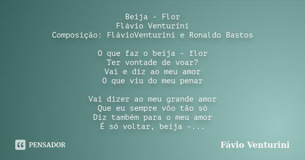 Beija - Flor Flávio Venturini Composição: FlávioVenturini e Ronaldo Bastos O que faz o beija - flor Ter vontade de voar? Vai e diz ao meu amor O que viu do meu ... Frase de Fávio Venturini.