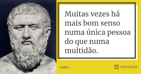 Muitas vezes há mais bom senso numa única pessoa do que numa multidão.... Frase de Fedro.