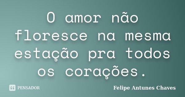 O amor não floresce na mesma estação pra todos os corações.... Frase de Felipe Antunes Chaves.