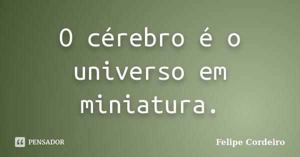 O cérebro é o universo em miniatura.... Frase de Felipe Cordeiro.