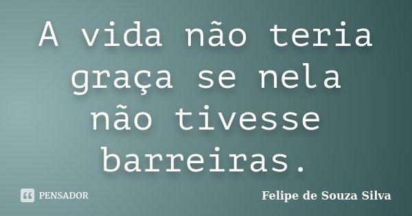 A vida não teria graça se nela não tivesse barreiras.... Frase de Felipe de Souza Silva.