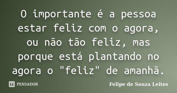 """O importante é a pessoa estar feliz com o agora, ou não tão feliz, mas porque está plantando no agora o """"feliz"""" de amanhã.... Frase de Felipe de Souza Leites."""