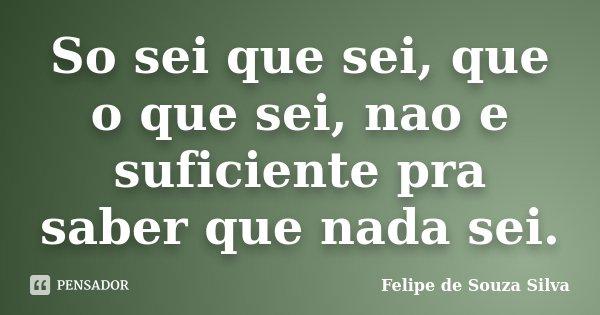 So sei que sei, que o que sei, nao e suficiente pra saber que nada sei.... Frase de Felipe de Souza Silva.