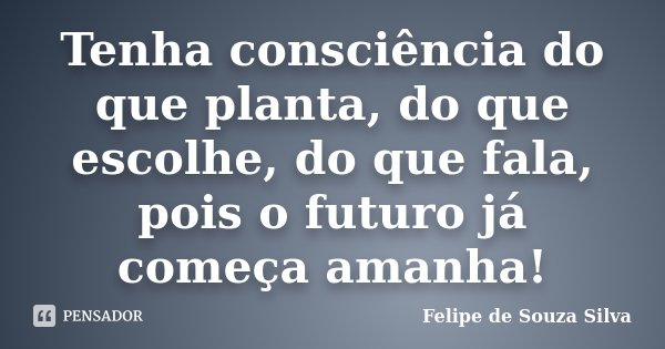 Tenha consciência do que planta, do que escolhe, do que fala, pois o futuro já começa amanha!... Frase de Felipe de Souza Silva.