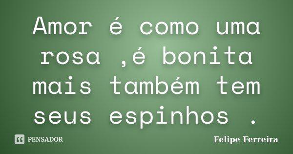 Amor é como uma rosa ,é bonita mais também tem seus espinhos .... Frase de Felipe ferreira.