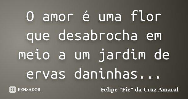 O amor é uma flor que desabrocha em meio a um jardim de ervas daninhas...... Frase de Felipe