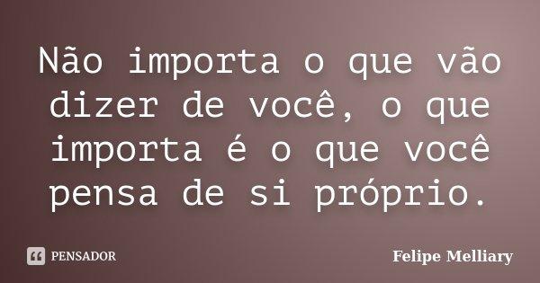 Não importa o que vão dizer de você, o que importa é o que você pensa de si próprio.... Frase de Felipe Melliary.