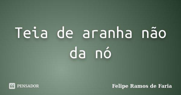 Teia de aranha não da nó... Frase de Felipe Ramos de Faria.