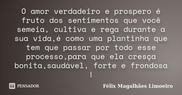 O amor verdadeiro e prospero é fruto dos sentimentos que você semeia, cultiva e rega durante a sua vida,é como uma plantinha que tem que passar por todo esse pr... Frase de Félix Magalhães Limoeiro.