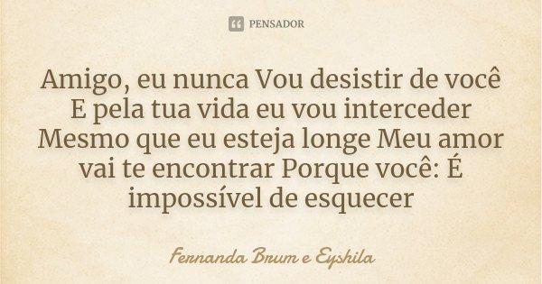 Nunca Vou Te Esquecer: Amigo, Eu Nunca Vou Desistir De Você E... Fernanda Brum E