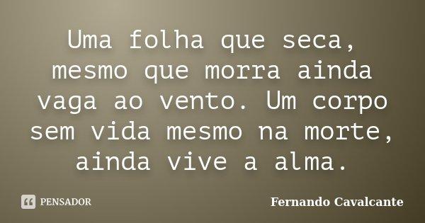 Uma folha que seca, mesmo que morra ainda vaga ao vento. Um corpo sem vida mesmo na morte, ainda vive a alma.... Frase de Fernando Cavalcante.