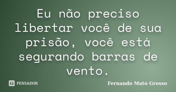 Eu não preciso libertar você de sua prisão, você está segurando barras de vento.... Frase de Fernando Mato Grosso.