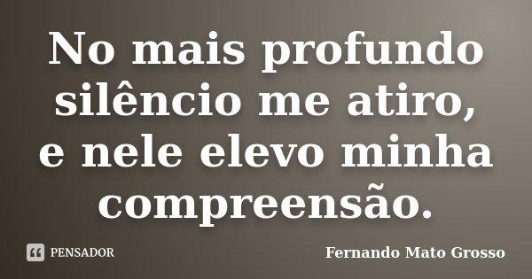 No mais profundo silêncio me atiro, e nele elevo minha compreensão.... Frase de Fernando Mato Grosso.