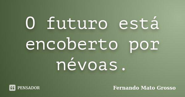O futuro está encoberto por névoas.... Frase de Fernando Mato Grosso.