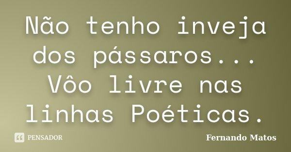 Não tenho inveja dos pássaros... Vôo livre nas linhas Poéticas.... Frase de Fernando Matos.