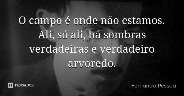 O campo é onde não estamos. Ali, só ali, há sombras verdadeiras e verdadeiro arvoredo.... Frase de Fernando Pessoa.