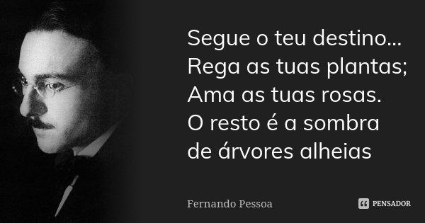 Segue o teu destino... Rega as tuas plantas; Ama as tuas rosas. O resto é a sombra de árvores alheias... Frase de Fernando Pessoa.