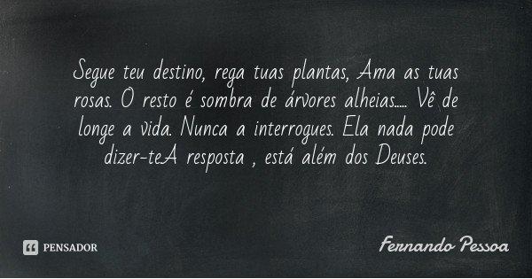 Segue teu destino, rega tuas plantas, Ama as tuas rosas. O resto é sombra de árvores alheias..... Vê de longe a vida. Nunca a interrogues. Ela nada pode dizer-t... Frase de Fernando Pessoa.