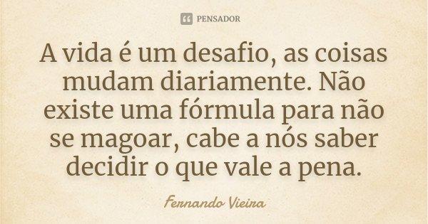 A Vida é Um Constante Recomeço: A Vida é Um Desafio, As Coisas Mudam... Fernando Vieira