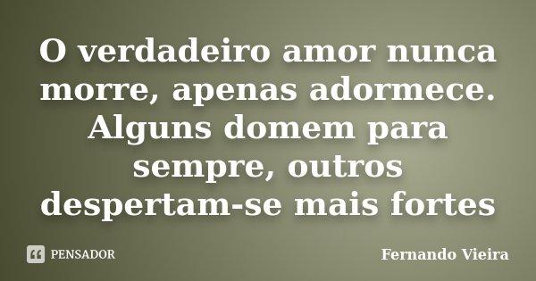 O verdadeiro amor nunca morre, apenas adormece. Alguns domem para sempre, outros despertam-se mais fortes... Frase de Fernando Vieira.