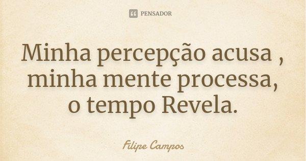 Minha percepção acusa , minha mente processa, o tempo Revela.... Frase de Filipe Campos.