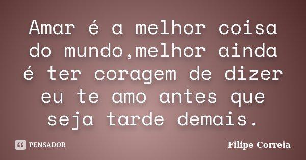 Amar é a melhor coisa do mundo,melhor ainda é ter coragem de dizer eu te amo antes que seja tarde demais.... Frase de Filipe Correia.