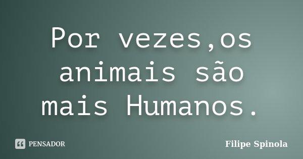 Por vezes,os animais são mais Humanos.... Frase de Filipe Spinola.