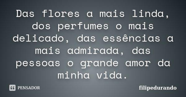 Das Flores a Mais Linda, dos Perfumes o mais Delicado, das Essências a Mais Adimirada, das Pessoas o Grande AmOor da Minha Vida.... Frase de filipedurando.