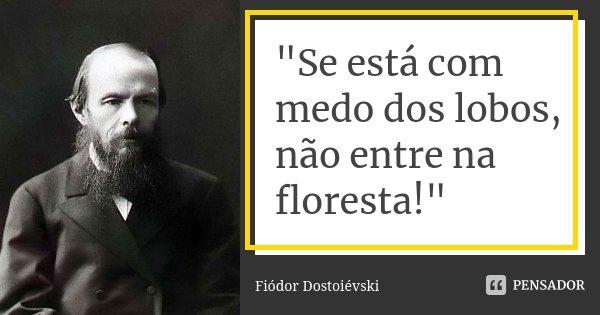 """""""Se está com medo dos lobos, não entre na floresta!""""... Frase de Fiódor Dostoiévski."""