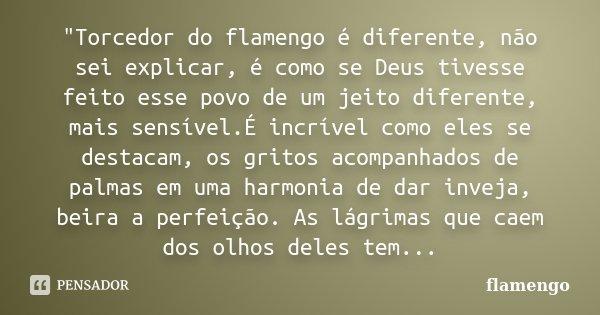 """""""Torcedor do flamengo é diferente, não sei explicar, é como se Deus tivesse feito esse povo de um jeito diferente, mais sensível.É incrível como eles se de... Frase de flamengo."""