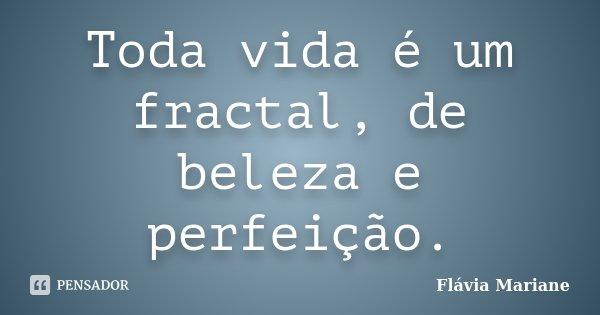 Toda vida é um fractal, de beleza e perfeição.... Frase de Flávia Mariane.