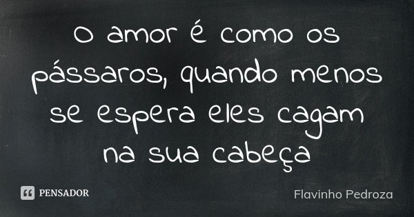 O amor é como os pássaros, quando menos se espera eles cagam na sua cabeça... Frase de Flavinho Pedroza.
