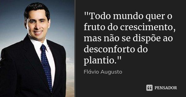 """""""Todo mundo quer o fruto do crescimento, mas não se dispõe ao desconforto do plantio.""""... Frase de Flavio Augusto."""