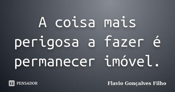 A coisa mais perigosa a fazer é permanecer imóvel.... Frase de Flavio Gonçalves Filho.